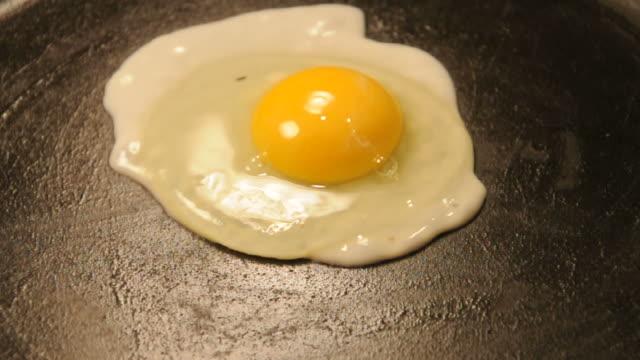 single egg frying in pan - stekt bildbanksvideor och videomaterial från bakom kulisserna