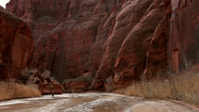 single man hiking alone through river in deep red rock desert slot canyon. - slot canyon stock videos & royalty-free footage