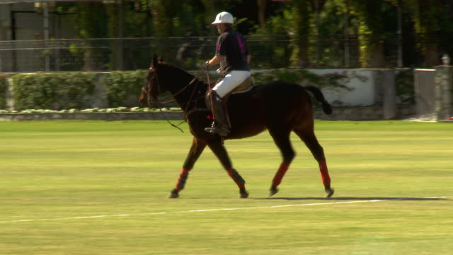 WS PAN ZI Single polo player on horseback slowly trodding during interval of polo match / Indio, California, USA