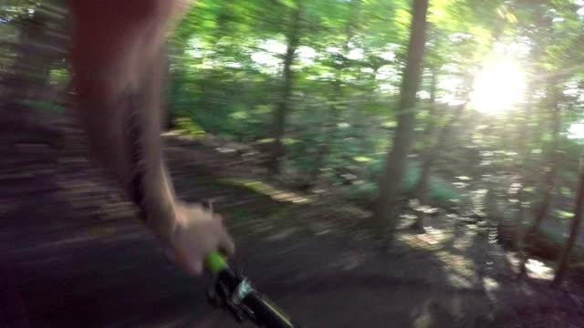 mtb-single track nella foresta - scuotere video stock e b–roll