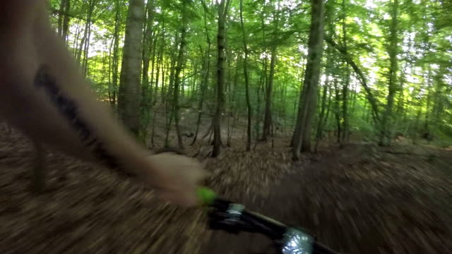 MTB - Single Track in the Forest