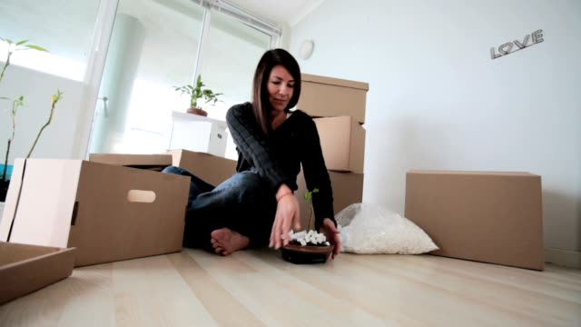 single woman packing up her home - downsizing stock videos & royalty-free footage