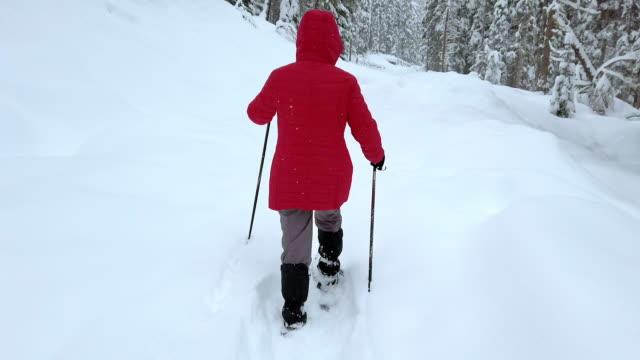 racchette da neve da donna single nella foresta invernale alpina - bastoncino da sci video stock e b–roll