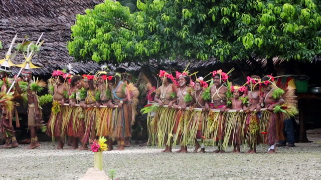 singsing ceremony performed for tourists in papua new guinea - pacific islander stock videos & royalty-free footage