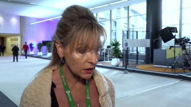 a sinn fein mep has signed off from brussels by insisting brexit has made the time ripe for a vote on irish reunification following her final speech... - ripe stock videos & royalty-free footage