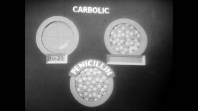 sir alexander fleming explaining the benefits of using penicillin to kill bacteria compared to using carbolic acid which also destroys healthy blood... - bacterium stock videos & royalty-free footage