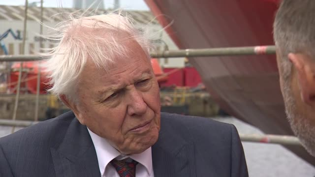 sir david attenborough interview england merseyside birkenhead cammell laird shipyard int sir david attenborough interview sot re launch of new ship... - micronesia stock videos & royalty-free footage