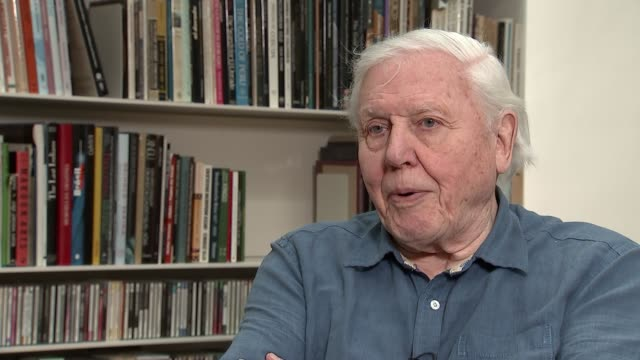 Sir David Attenborough interview on 'The Queen's Green Planet' documentary ENGLAND London Kingston INT Sir David Attenborough interview SOT On Queen...