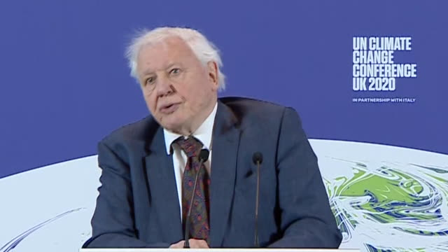 sir david attenborough saying the longer we leave climate change and go on talking about the problems the worse it's going to get - planet space stock videos & royalty-free footage