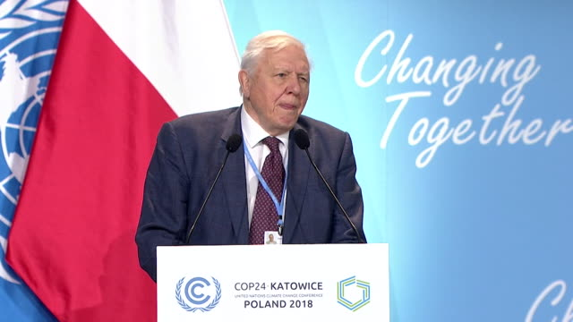 """sir david attenborough saying we face """"a man-made disaster on a global scale"""" in regards to climate change during his speech at the un climate change... - danger stock videos & royalty-free footage"""