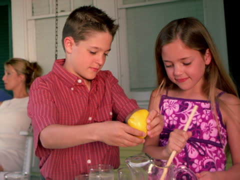 sister and brother make lemonade - lemonade stock videos and b-roll footage