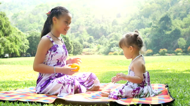 妹や妹のテーマパークで遊ぶボール - 生後18ヶ月から23ヶ月点の映像素材/bロール