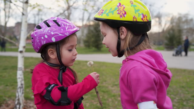 sisters blowing dandelion together - elbow pad stock videos & royalty-free footage