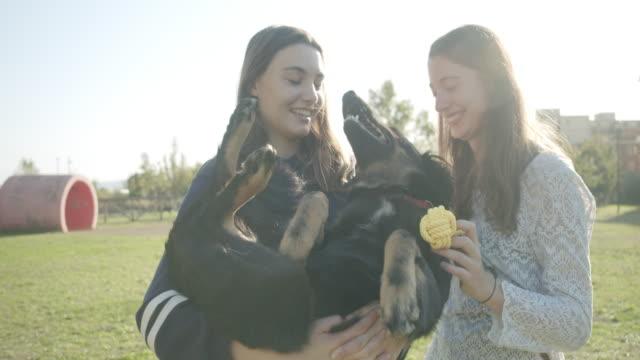 vídeos de stock e filmes b-roll de sisters holding dog - acariciar