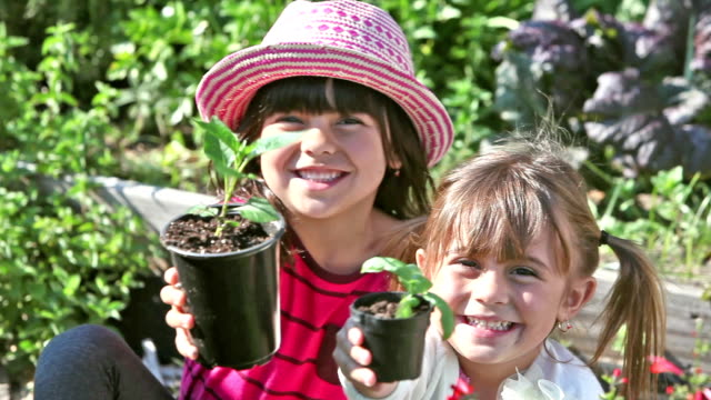 Sisters in garden planting seedlings