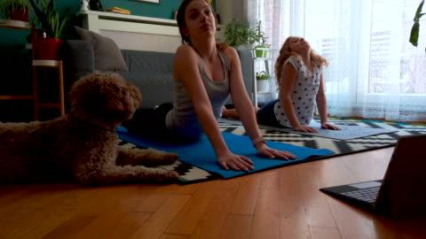 vídeos y material grabado en eventos de stock de hermanas practicando yoga en casa con instructor en línea - yoga