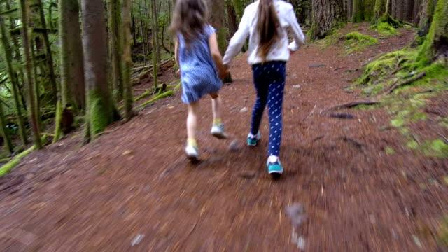 vídeos de stock e filmes b-roll de sisters running through the forest follow cam - raparigas