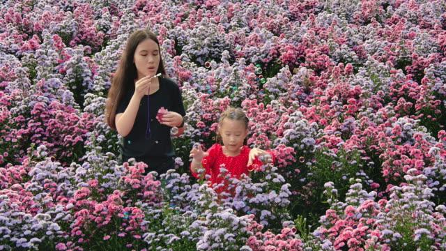 slo mo systrar syskon leker bubbla i flower field - tvåbarnsfamilj bildbanksvideor och videomaterial från bakom kulisserna