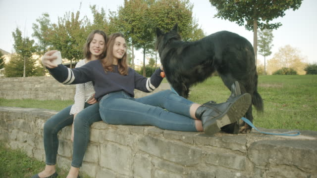 sisters taking selfie with dog - photographing点の映像素材/bロール
