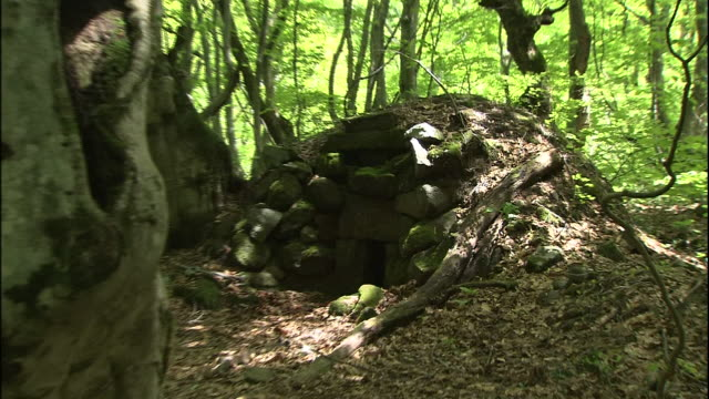 A site of charcoal kiln hides in a forest of Japanese beech trees in Mt. Chokai, Japan.