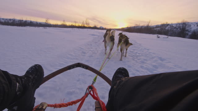 POV Sitting on a sled pulled by sled dogs