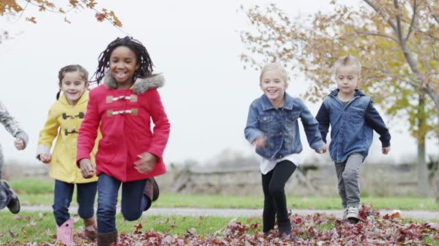 Zes en zeven jaar oude kinderen spelen in de herfstbladeren