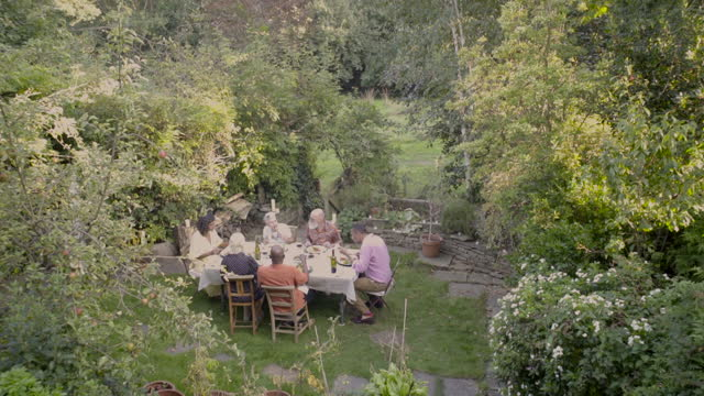 six friends eating outside - grass family stock videos & royalty-free footage