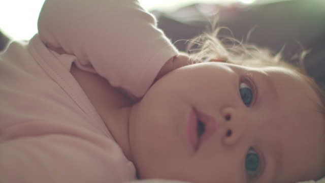 six months old baby girl looking around - 0 11 mesi video stock e b–roll