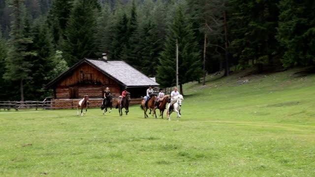 six riders galloping on a meadow, san vigilio di marebbe, st. vigil, italy - trentino alto adige stock videos & royalty-free footage