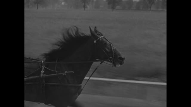 six trotters running on track at good time park / vs front legs of horse head of animal competing teams sulkies drivers wheels / horses round final... - animal harness stock videos and b-roll footage