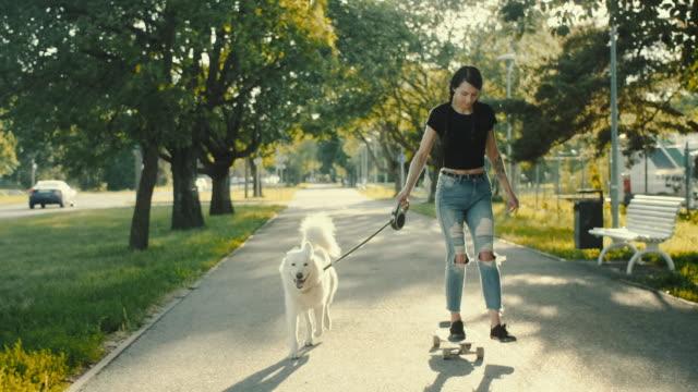 skateboard mit dem haustier hund - skateboard stock-videos und b-roll-filmmaterial