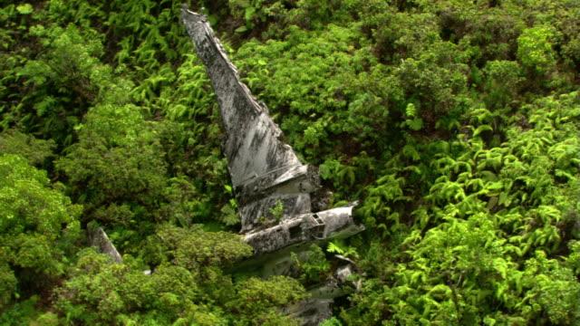 stockvideo's en b-roll-footage met skeletal plane crash - artbeats