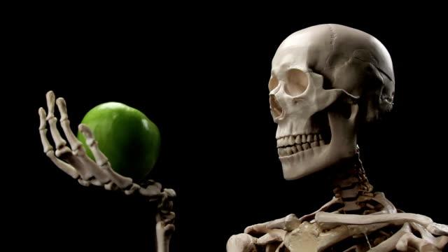 skelett sniffs apple - menschliches skelett stock-videos und b-roll-filmmaterial
