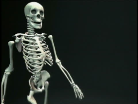 cgi ms skeleton walking towards & away from camera with black background - cinematography stock videos & royalty-free footage