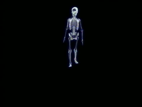 cgi skeleton walking towards + past camera with black background - biomedizinische illustration stock-videos und b-roll-filmmaterial