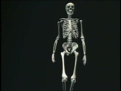 CGI skeleton walking towards + past camera with black background
