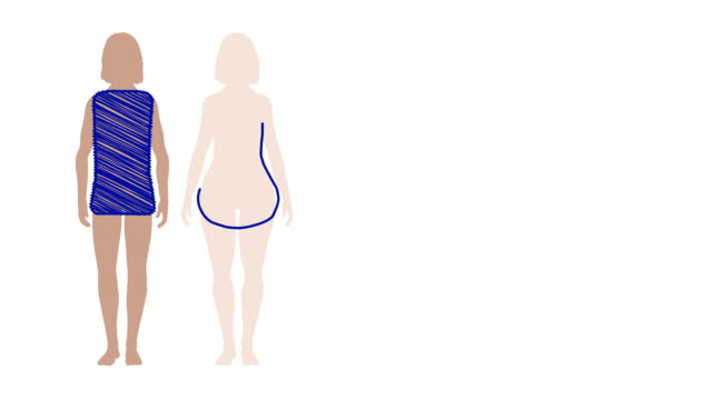 Skizze-animation weibliche bodyshapes