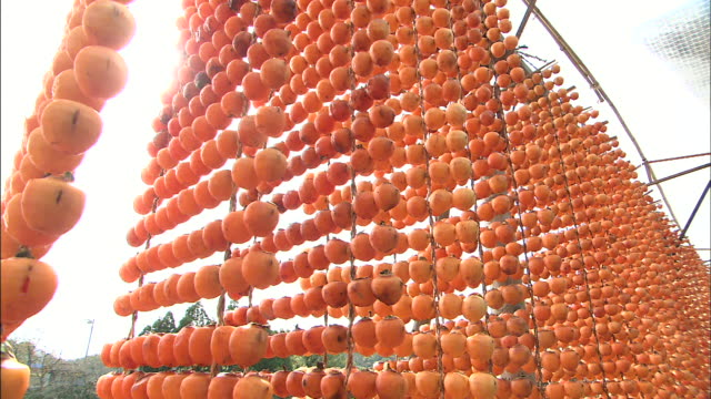 skewered japanese persimmons hang on lines. - onomichi hiroshima stock videos and b-roll footage