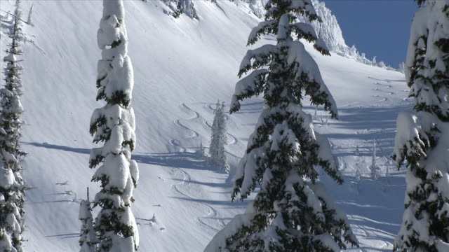 zo ski lines in side of mountain / nelson, british columbia, canada - british columbia stock videos & royalty-free footage