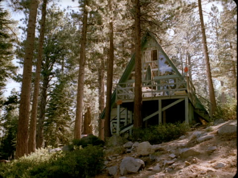 ws, la, ski lodge surrounded by pine trees, lake tahoe, nevada, usa - placca di montaggio fissa video stock e b–roll