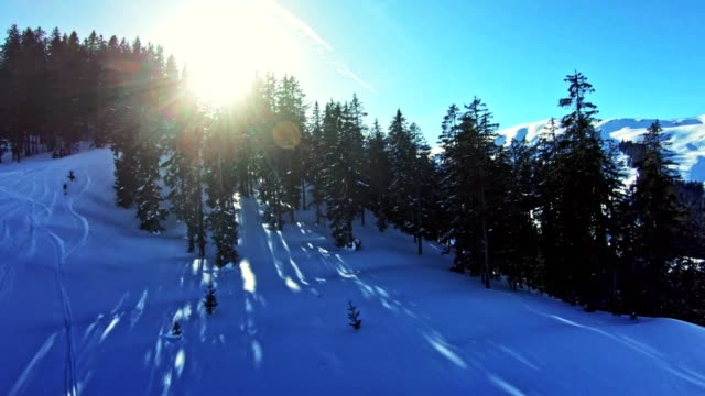 ski slope on a sunny day. leisure activity - extreme terrain stock videos & royalty-free footage