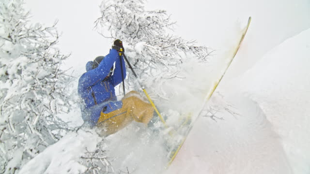 slo mo skier jumping out of bushes in powder snow - pulverschnee stock-videos und b-roll-filmmaterial