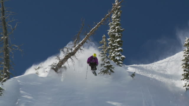 ws td pan slo mo skier jumps under log and lands in powdery snow / alta, snowbird, utah, usa - ユタ州 アルタ点の映像素材/bロール
