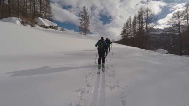 skier, ski touring - track imprint stock videos and b-roll footage