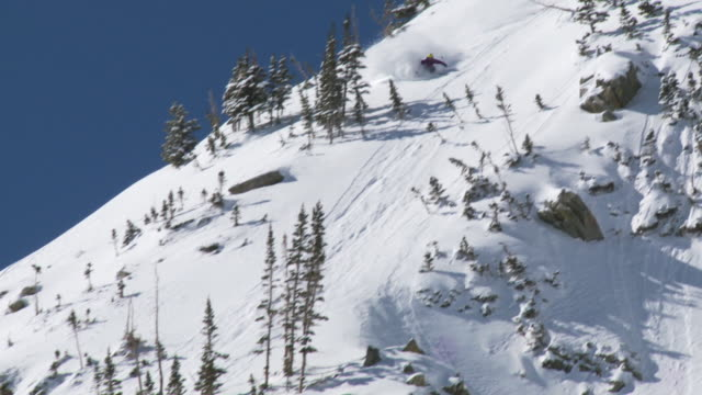 ws td skier skiing from peak of mountain / alta, snowbird, utah, usa - ユタ州 アルタ点の映像素材/bロール