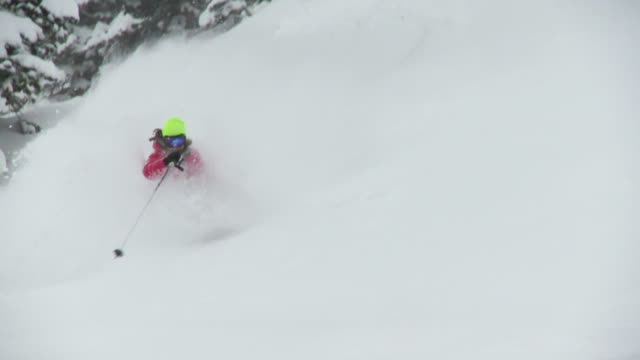 stockvideo's en b-roll-footage met ws td zi slo mo skier skiing in powdery snow / alta, snowbird, utah, usa - alta utah