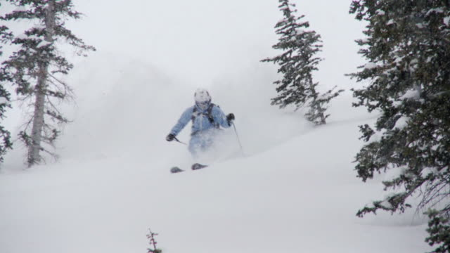 stockvideo's en b-roll-footage met ws td pan slo mo skier skiing in powdery snow / alta, snowbird, utah, usa - alta utah