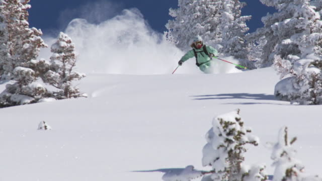 ws zo slo mo skier skiing in powdery snow / alta, snowbird, utah, usa - one mid adult woman only stock videos & royalty-free footage