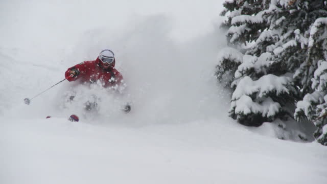 ws td pan slo mo skier skiing in powdery snow / alta, snowbird, utah, usa - ユタ州 アルタ点の映像素材/bロール