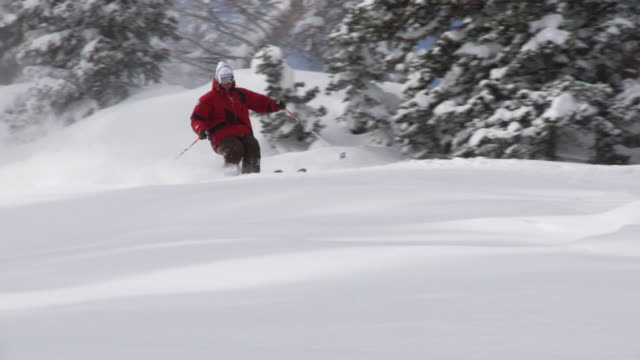 WS PAN TS SLO MO Skier skiing in powdery snow / Alta, Snowbird, Utah, USA